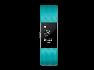 Fitbit Charge 2 Akıllı Bileklik (Small)