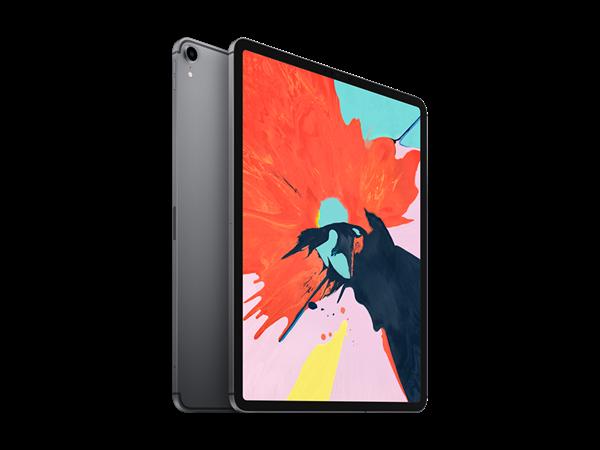 11 inç iPad Pro Wifi + Cellular 256GB 2019
