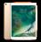 10.5 inç iPad Pro WiFi 64GB