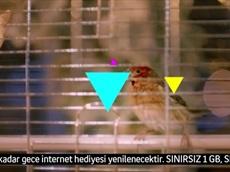 gece bizim ile gnçtrkcll'de lezzetli internet!
